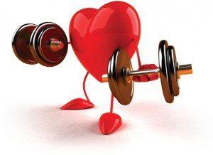 hart- en vaatziektes beweegprogramma
